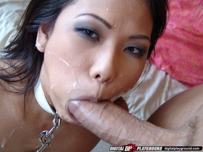 Small titty leashed asian Veronica Lynn gets her face cum plastered after riding a cock